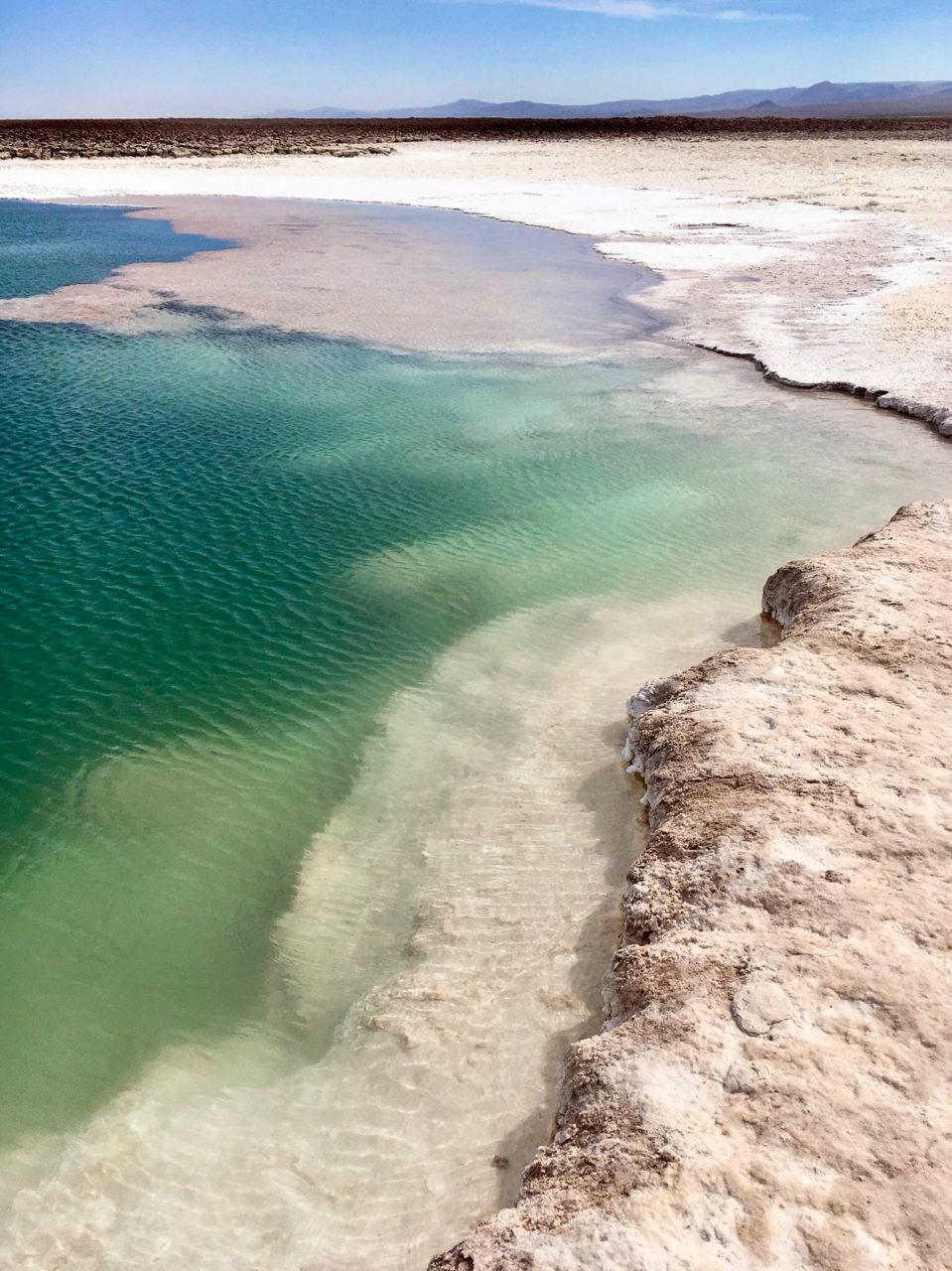 atacama desert chili laguna cejar baltinache
