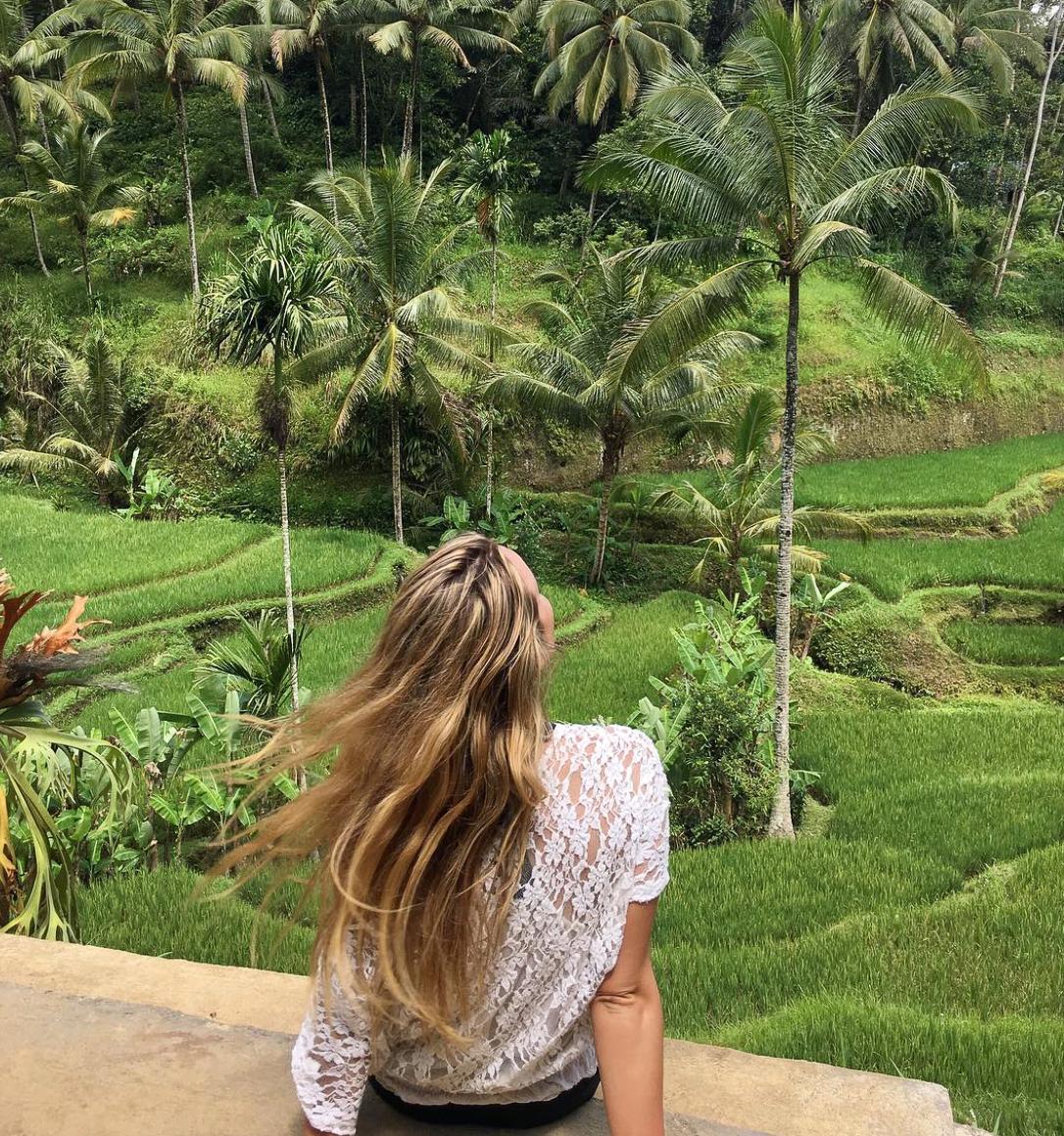 ubud-rice-terraces